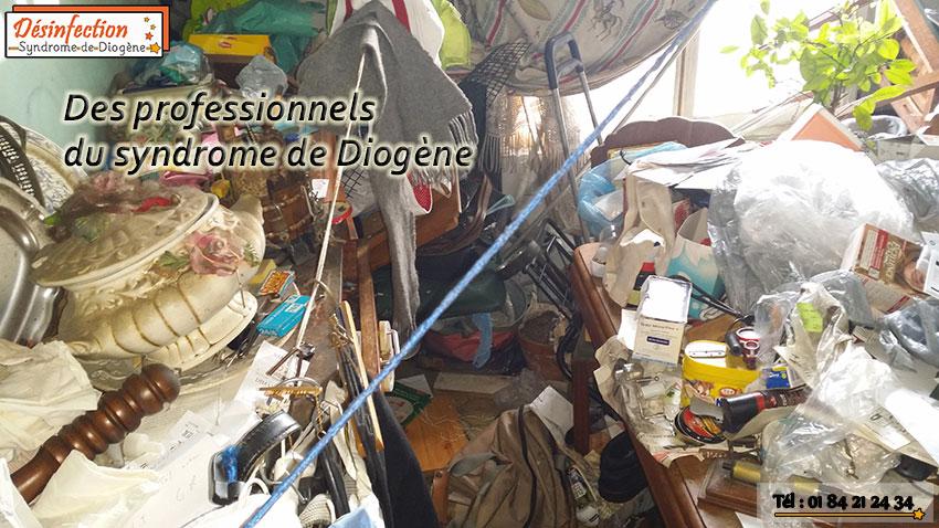 Des professionnels du syndrome de Diogène