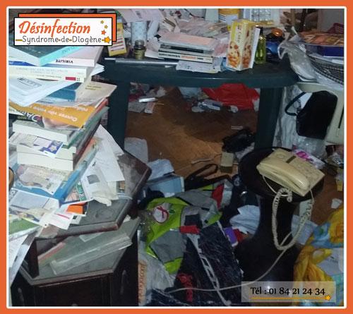 rangement, nettoyage, syndrome de diogène