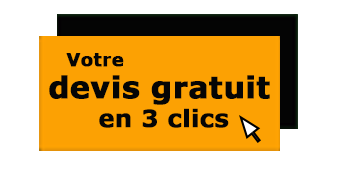 Demandez votre devis gratuit personnalisé pour vos demandes de débarras et désinfection sur Lyon