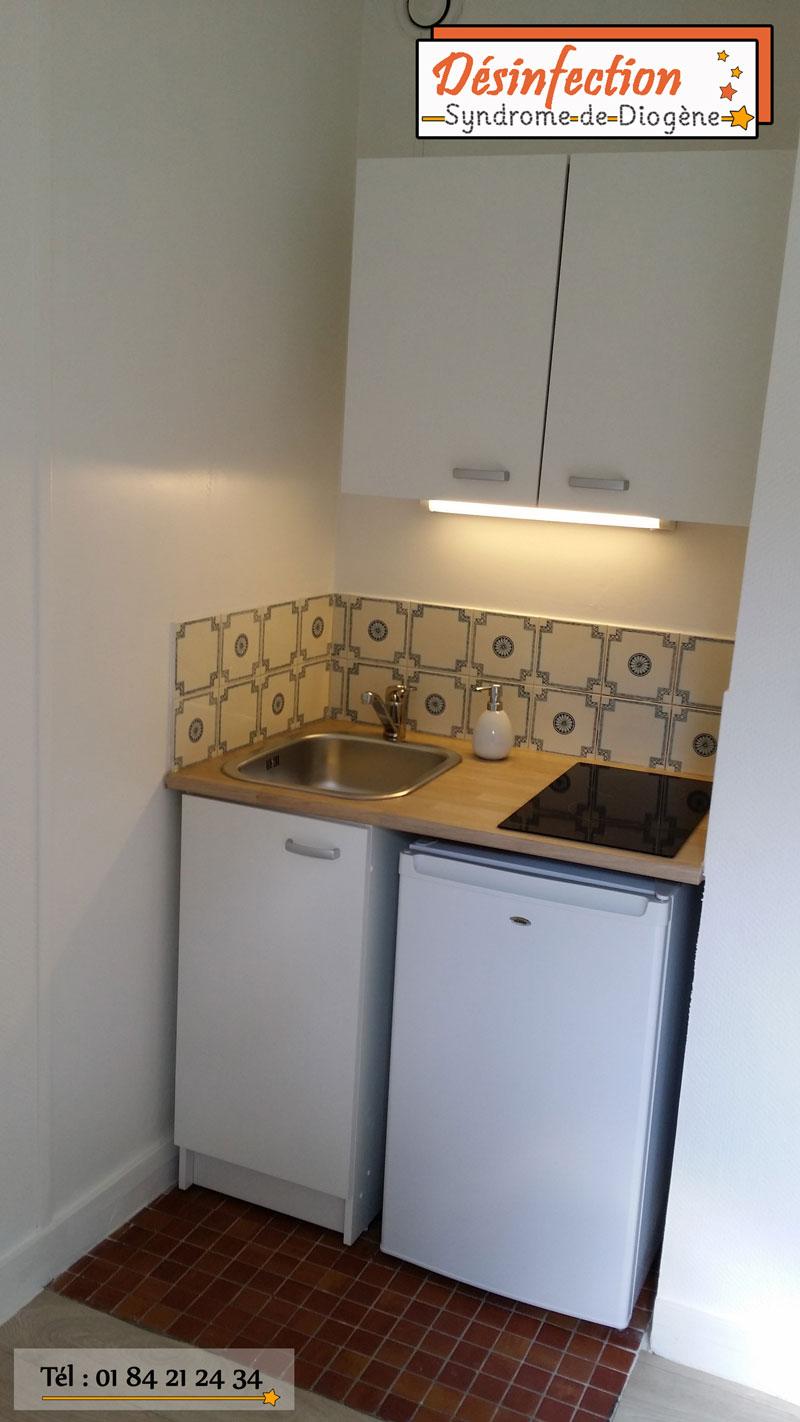 renovation-appartement-paris-syndrome-diogene